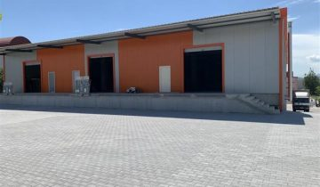 Warehouse with 1230 m2 available for rent in Vizbegovo.